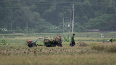 People putting hay on a tractor Mai Châu Stock Footage