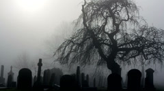 Thunderstorm in foggy spooky graveyard with sound Stock Footage