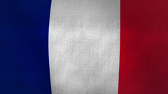 France Waving Flag (Loop-able) Stock Footage