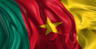 Stock Video Footage of Flag of Cameroon