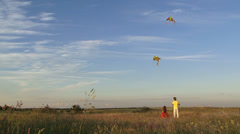 Kites in the sky Stock Footage