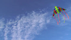 Kite in the wind Stock Footage