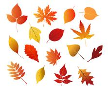 Autumnal red, yellow and brown leaves Stock Illustration