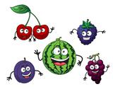Stock Illustration of cherry, watermelon, grape, bilberry and plum