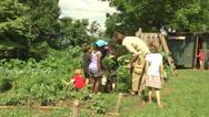 Stock Video Footage of kitchen garden finding garden bugs