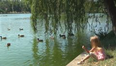 Child Feeding Ducks from Edge Lake, Water, Little Girl Playing in Park, Children Stock Footage