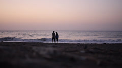 Couple with sea and birds  - stock footage