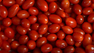 Stock Video Footage of Fresh Mini Tomatoes Rotate