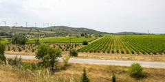 Stock Photo of landscape near carcassonne