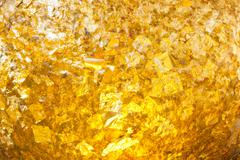 the gold leaf - stock photo