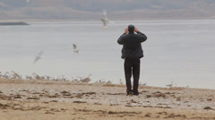 Man trying take pictures birds on the beach Stock Footage