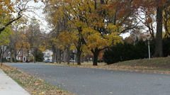Windy suburban street autumn - Panning Shot (65) Stock Footage