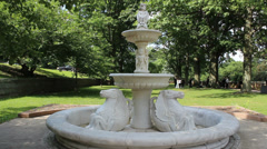Fountain with Wedding Photographer in BG (96) Stock Footage