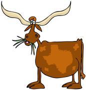 Original Texas longhorn - stock illustration
