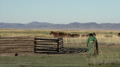 Mongolian woman walk towards horses while the man rides the horse Stock Footage