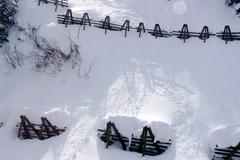 Avalanche control for protection against avalanches Stock Photos