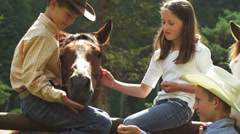 Two young boys in a cowboy hats and a girl petting a horses - stock footage