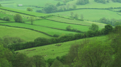 WS HA Rural landscape / Somerset, UK - stock footage