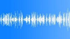 Voice recording digitally encoded v2 Sound Effect