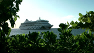 Stock Video Footage of Cayman Islands, cruise ship aida aura inside a frame of exotic plants