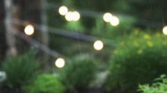 CU DEFOCUSED Grass and bush in garden in rain / Draper, Utah, USA Stock Footage