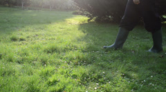 early morning lawn grass dew drops. man with rubber boots walk - stock footage