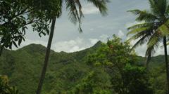 WS LA PAN Tropical landscape / Soufriere, St. Lucius, Caribbean Stock Footage