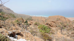 Desert and ocean. Socotra island, Yemen. Stock Footage