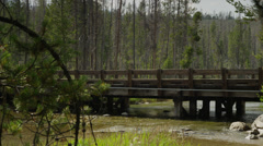 Panning wide shot of woman running across bridge over lake / Redfish Lake, Stock Footage