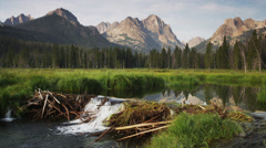 Wide shot of mountains and beaver dam on lake / Redfish Lake, Idaho, United Stock Footage