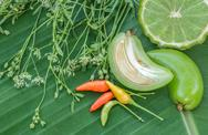 Fresh spices and herbs on a green leaf. Stock Photos