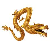Golden Chinese dragon series isolated on white background - stock illustration