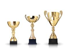 Three different kind of golden trophies. isolated on white background Stock Illustration