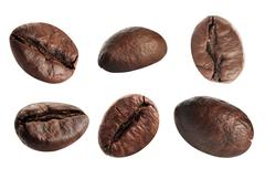 close up coffee beans. isolated on white background - stock illustration