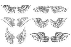 Set of eagle or angel wings Stock Illustration