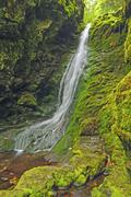 falls in a mossy canyon - stock photo