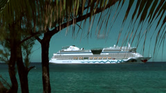 Cayman Islands, a smiling German cruise ship under a treetop of a palm tree Stock Footage