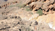 Stock Video Footage of Stones in canyon. Socotra island, Yemen