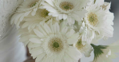 Beautiful bride holding her bouquet of daisies Stock Footage