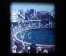 Dolphin show at aquarium Stock Footage