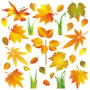 Set of autumn leaves and grass isolated over white Stock Illustration