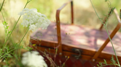 Picnic basket sitting in a field of flowers Stock Footage