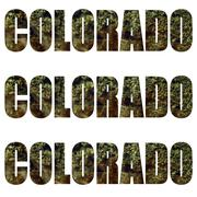 Marijuana colorado Stock Illustration