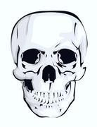 Stock Illustration of abstract skull