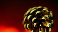 Pine cone pinecone fire burn burning Stock Footage