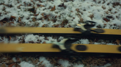 Skis ski on snow Stock Footage