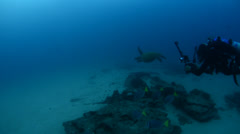 Diver and turtle Stock Footage