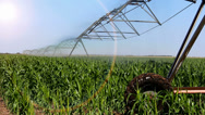 Stock Video Footage of Automated irrigation system