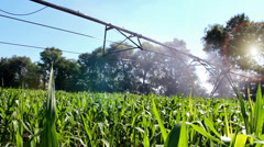 Irrigation Sprinkler Stock Footage