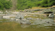 Stock Video Footage of Small mountain river in spring